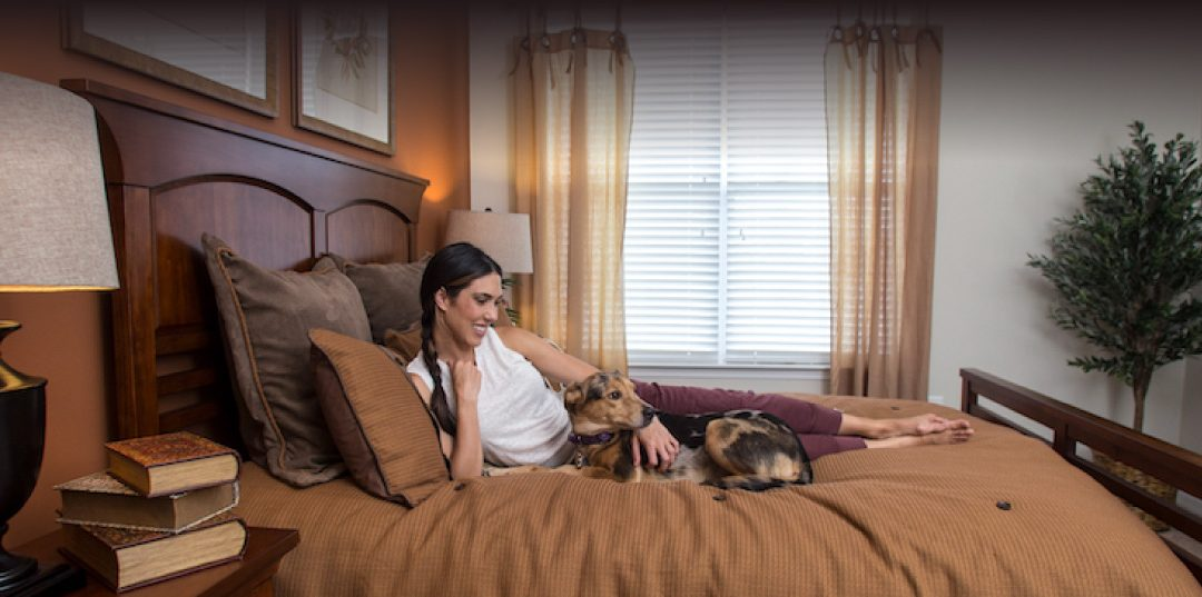5 Tips for Apartment Living With Pets